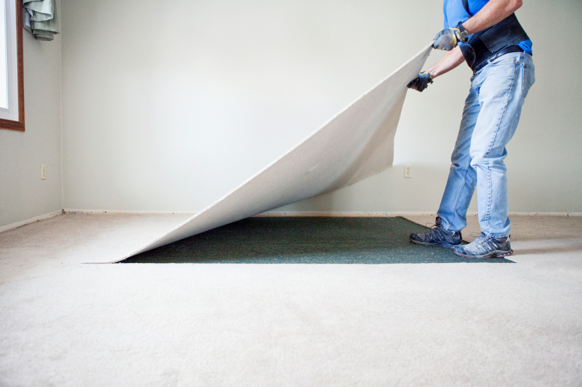 Thinking About Upgrading from Carpeting? Consider These Flooring Options