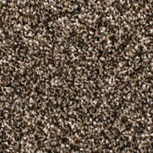 Phenix Carpets None Cape Chidley Sesame 113