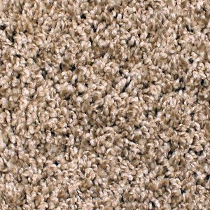 Phenix Carpets None Cape Hatteras Dusting Powder 106