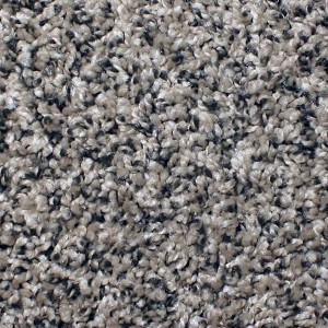 Phenix Carpets None Chandler Bay Motion 402