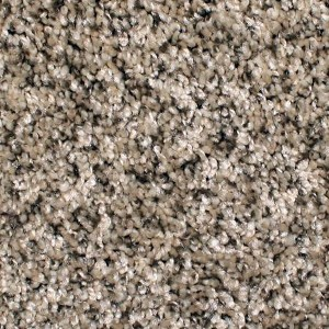 Phenix Carpets None Cape Verde Pecan Shell 104