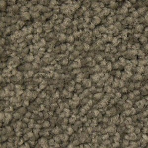 Phenix Carpets None City Park Flannel Suit 8