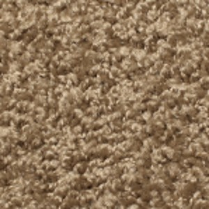 Phenix Carpets None Landscape Courtland 103