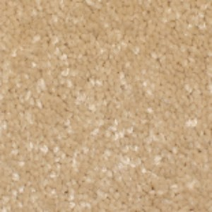 Phenix Carpets None Panache Alabaster 06
