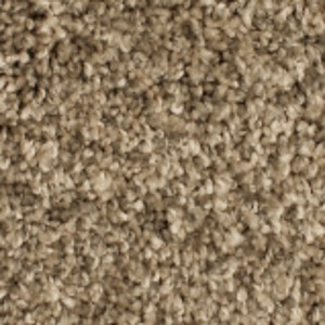 Phenix Carpets None Paragon Coastal Fog 07