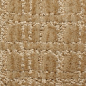 Phenix Carpets None Passageway Agreeable 07