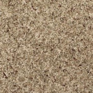 Phenix Carpets None Canal Street Flax Seed 5