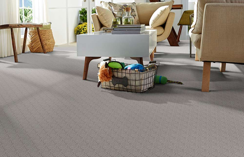 Phenix Carpets None Clever Expression Alert 11